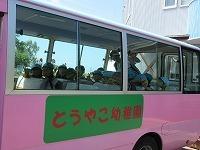 IMG_6524.jpg